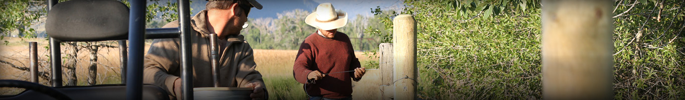 Fencing at Murdoch's Ranch and Home Supply