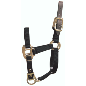 Break-Away Horse Halter-Foal