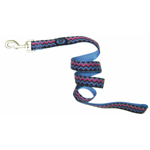Nylon Dog Leash with Deluxe Webbing-Weave Design