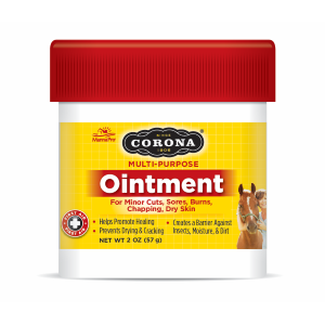 Multi-Purpose Ointment