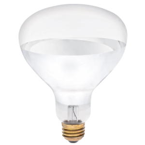 125 Watt Clear Heat Lamp Bulb