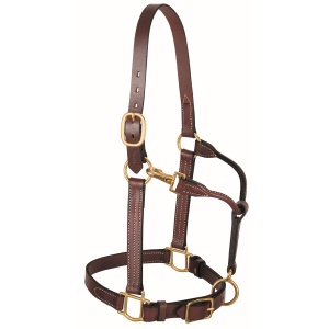 3-in-1 All Purpose Horse Halter