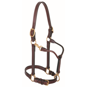 Leather Track Horse Halter