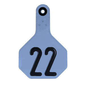 All American Medium 3-Star #26-50 ID Tags